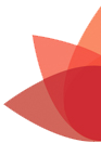 Medio logo izquierdo